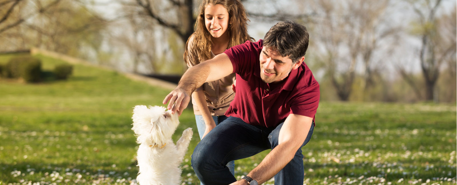 Online Dog Training | PuppyTrainedRight.com